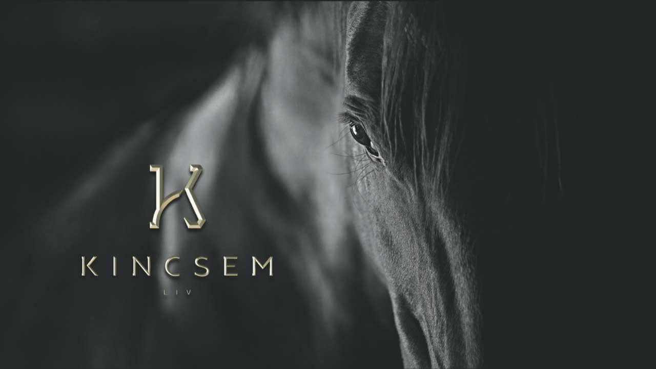 horse-kincsem